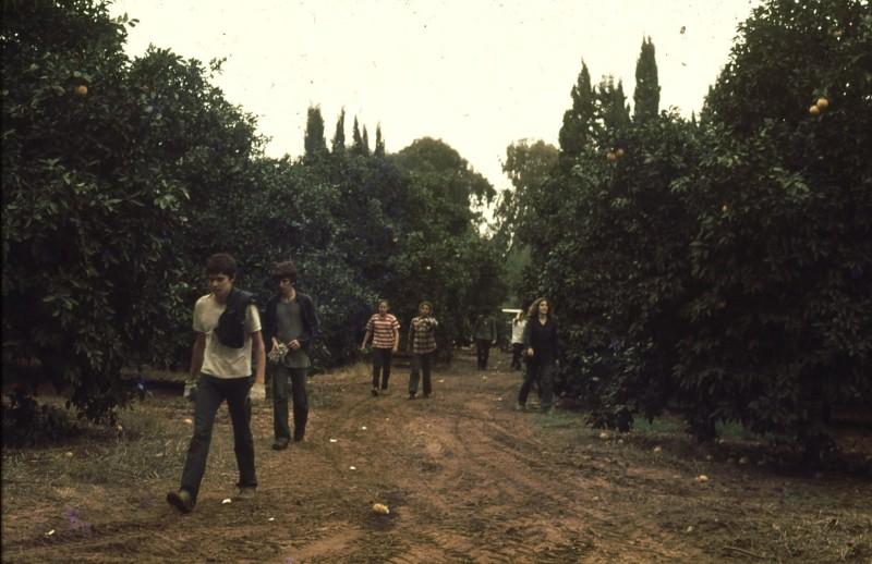 שקופית 1- 191 -ג'ש 1983-מוסד-קטיף-זמיר סיון משה