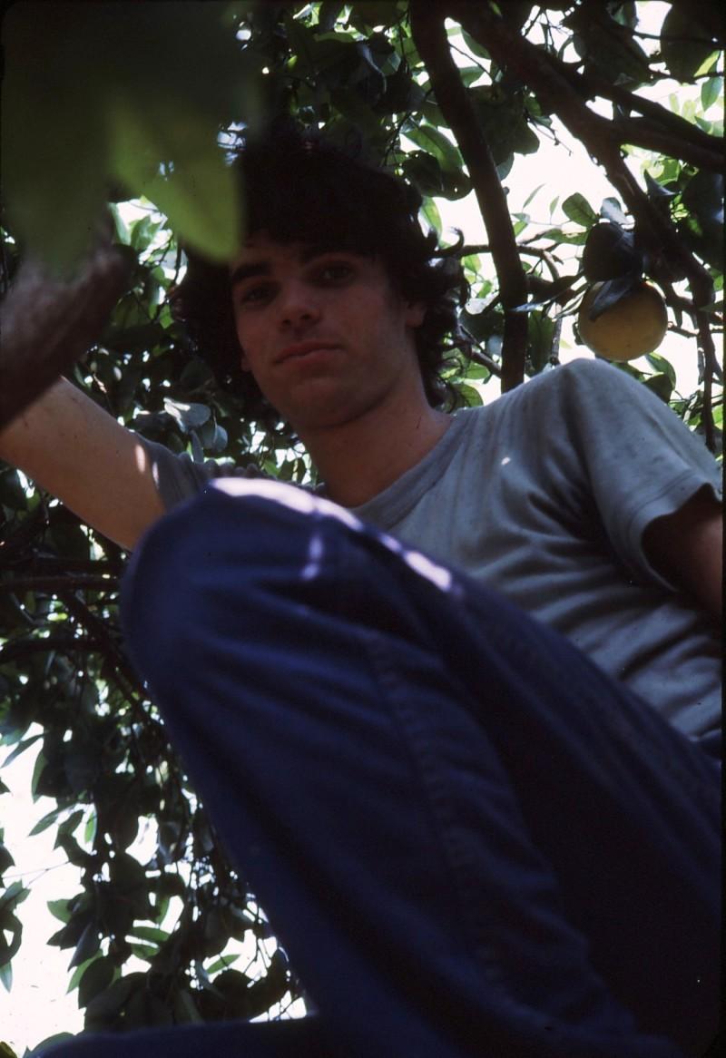 שקופית 5- 191 -ג'ש 1983-מוסד-קטיף ניר גרביה