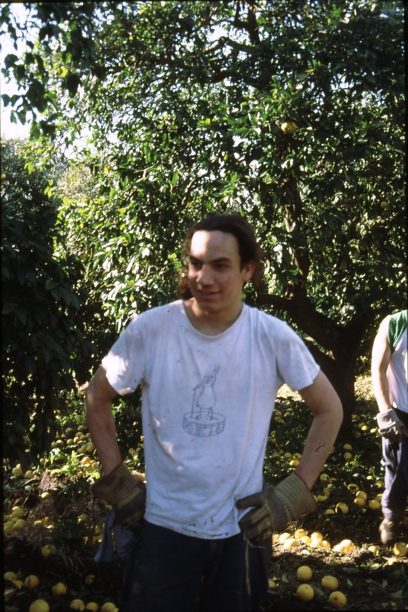 שקופית 11- 183 -ג'ש 1995-מוסד-קטיף-ערן צנטנר