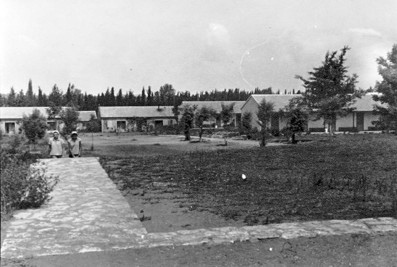 תמונה 44- 914 -גש 1953-המוסד-מראה כללי מחדר האכל-היתנים והצריפים השבדיים