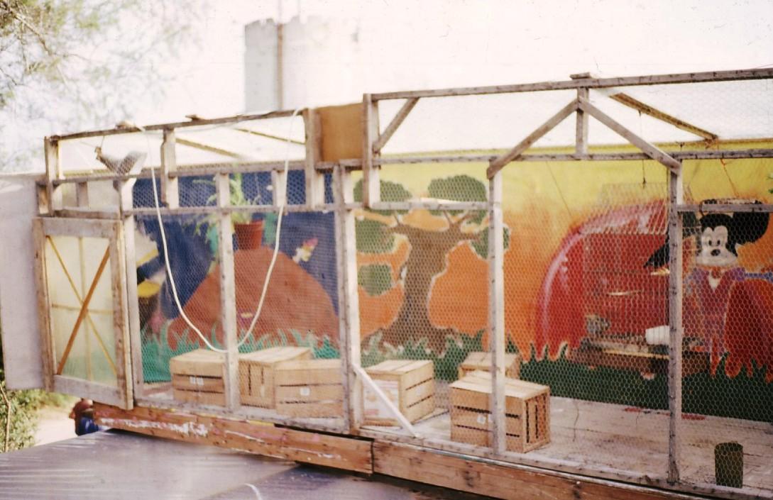 שקופית 18- 231 -ג'ש 1985-קב' רותם-פורים במוסד