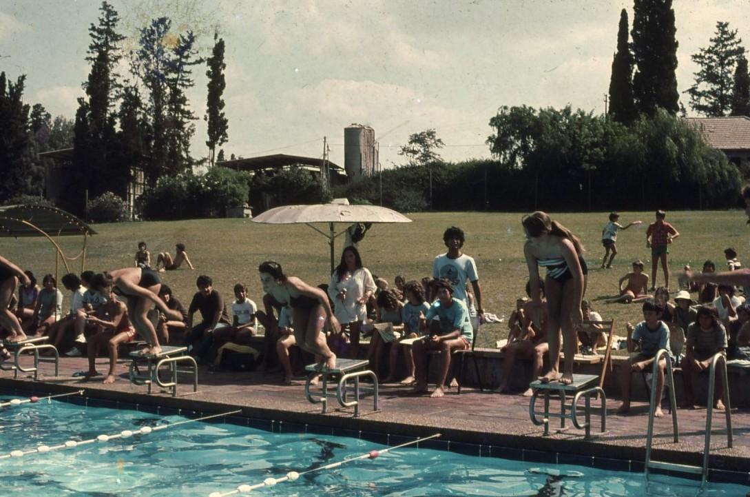 שקופית 27- 231 -ג'ש 1980-3-בבריכת השחייה-אליפות המוסד בשחייה