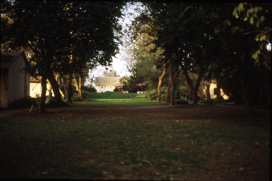 שקופית 54- 231 -ג'ש 1986-9-המוסד-הדשא המרכזי וחדר האכל