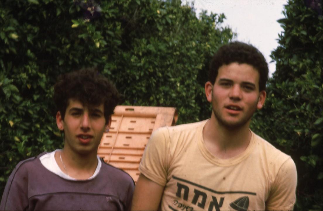 שקופית 59- 231 -ג'ש 1986-קב' רותם-בקטיף-אסף בראון