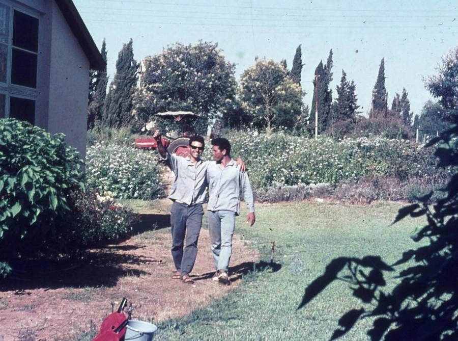 שקופית 24- 296 -ג'ש 1967-קב' חבצלת-בני לפידות יעקב בן-זאב