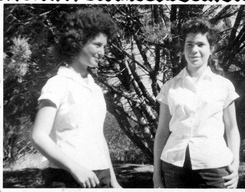 לאקה גלוברמן - מיכל פגי שבולת 1961