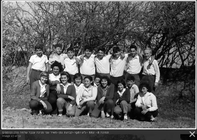 גפן 1961
