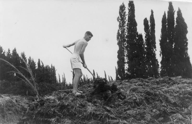 תמונה 32- 914 -גש 1953-קב שבלים-אורי אילן עובד בערימת הזבל