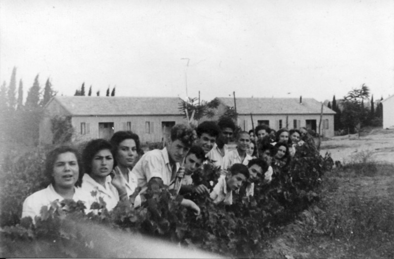 תמונה 37- 914 -גש 1953-קב שבלים-פרטים בסכום