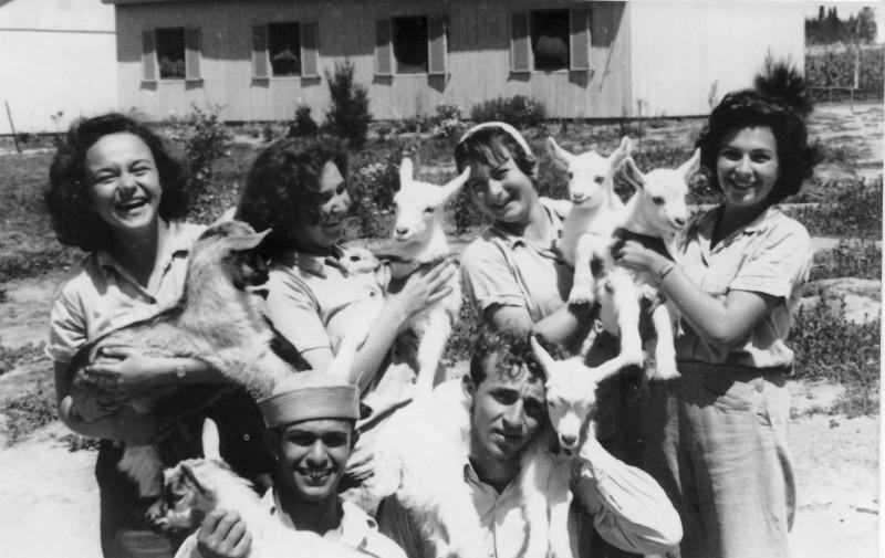 תמונה 39- 914 -גש 1953-קב שבלים-פרטים בסכום