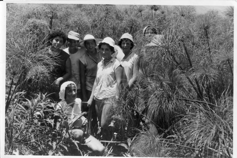 תמונה 10- 37 - טיול קבוצת אילה לחולה שנות ה50 - עדה ערמון אוה שרון יעל פלפן