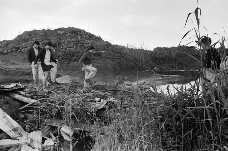 תמונה 7- 736 -ג'ש 1956-קבוצת אילה בדמיירה-יעל פלפן