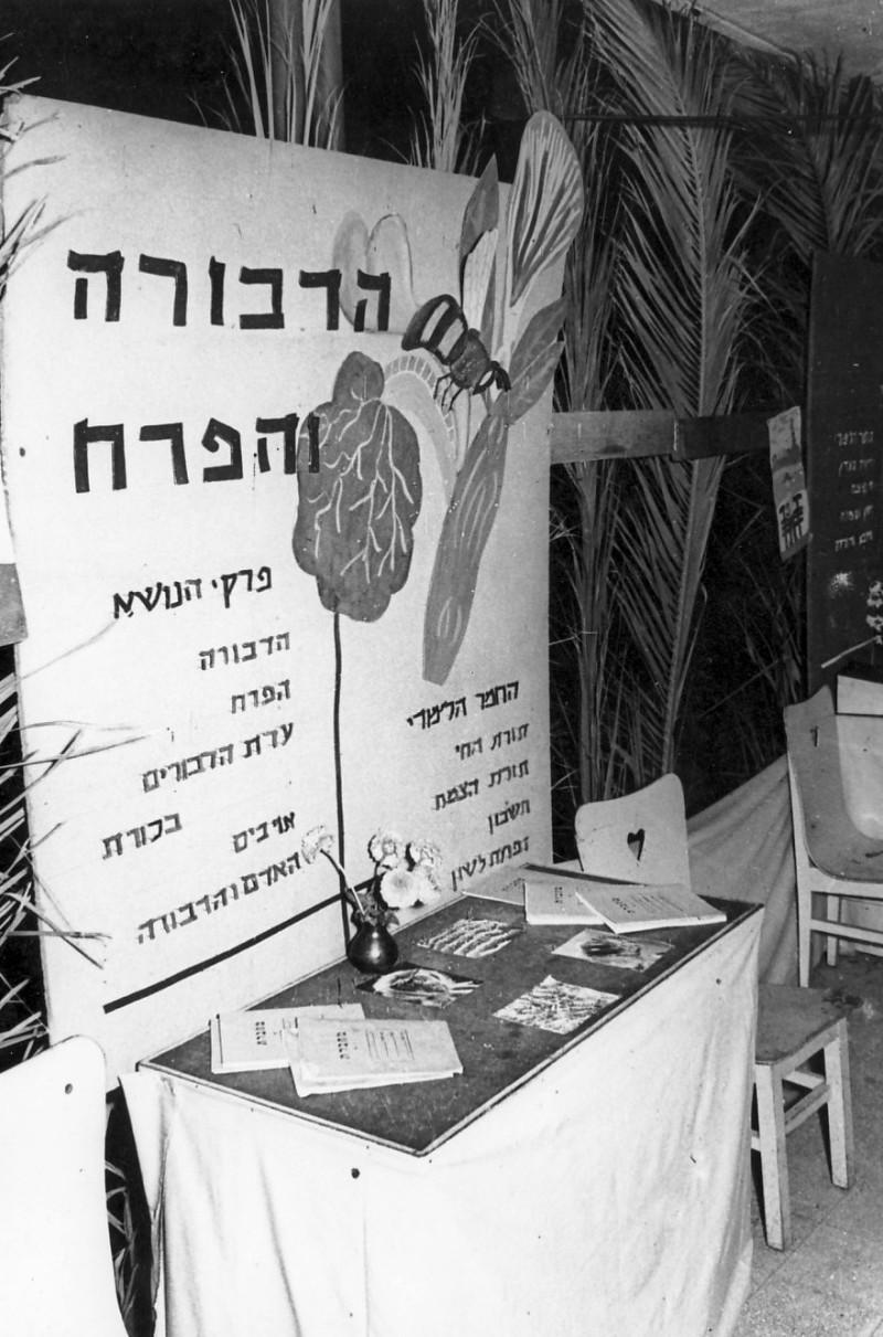 תמונה 10- 50 - תערוכת סיום בחברת הילדים של קבוצת אלומה 1955 - מחנך - בצלאל לב