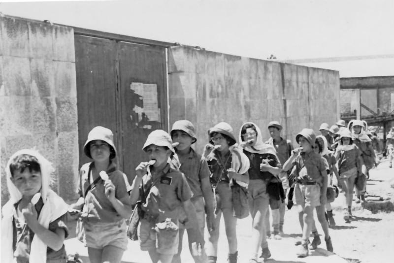 תמונה 11- 250 - טיול ארטיקים - קבוצת אלומה שנות ה-50 - נאוה ליפשיץ