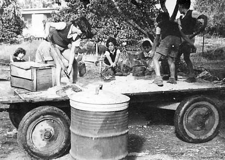 תמונה 12- 67 - ילדי אלומה בעבודה - נועה ונאוה ליפשיץ אריאל זילבר יהודית