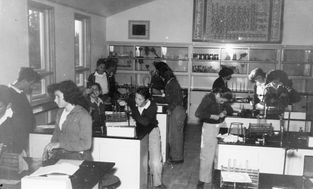יהודי שי במעבדה אילה