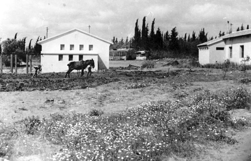 תמונה 14- 235 - הבית השני במוסד - שנות ה-50