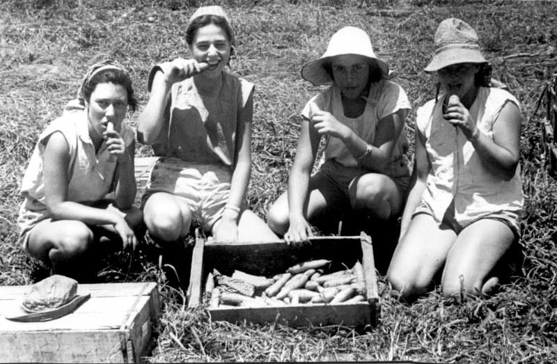 תמונה 22- 123 - בנות קבוצת עופר עובדות בגן הירק 1954 - שמות בגב התמונה בסיכום