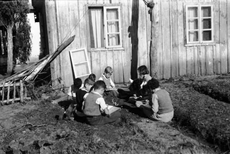 תמונה 38- 411 - ילדי קבוצת עופר מטפלים בגינת הירק שלהם - 1945-8