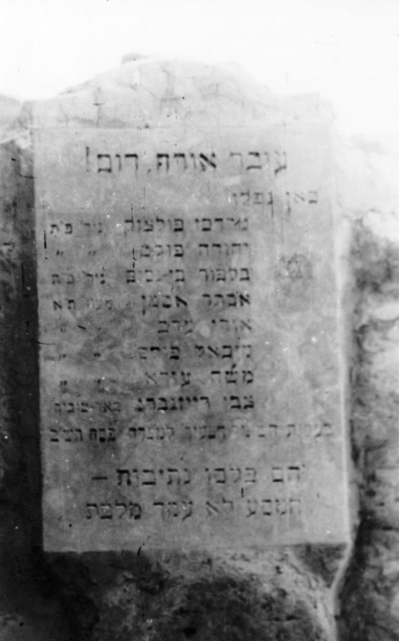 תמונה 49- 408 - קבוצת עופר - טיול למצדה 1954 - פרטים בגב התמונה ובסכום
