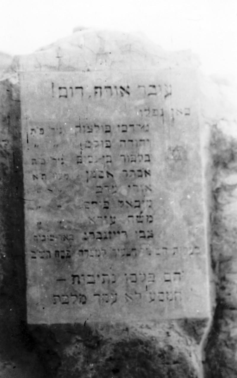 תמונה 48- 408 - קבוצת עופר - טיול למצדה 1954 - בנחל דוד בעין גדי