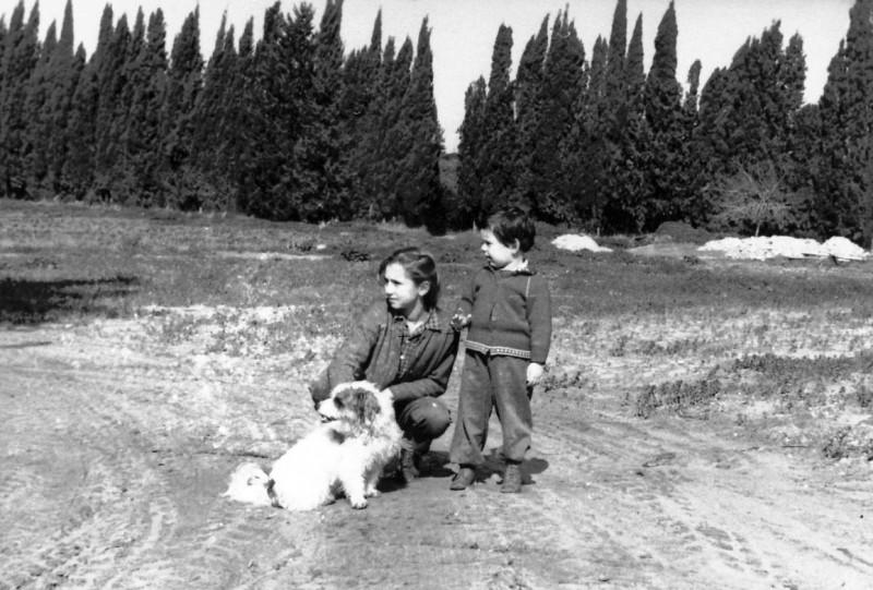 תמונה 1- 309 - אורנה וענת גלילי עם הכלבה אלבינה - שנות ה-60