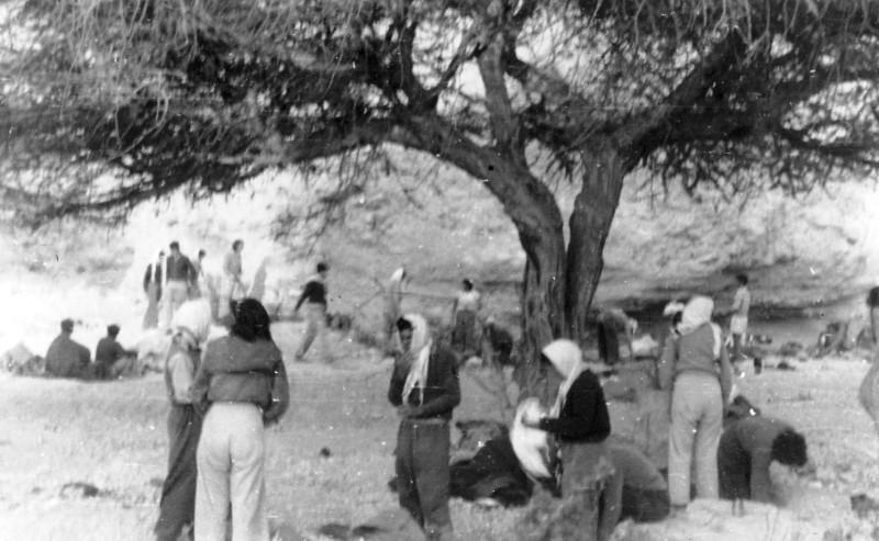 תמונה 25- 408 - קבוצת עופר - טיול למכתשים 1955