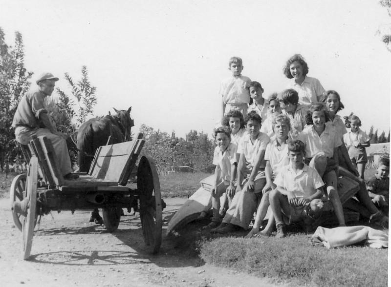 תמונה 31- 236 - קבוצת עופר 1946 - חזקי נירה ל יגאל  עופר אהוד גילאי גידי יוספזון-שאר שמות-בסיכום