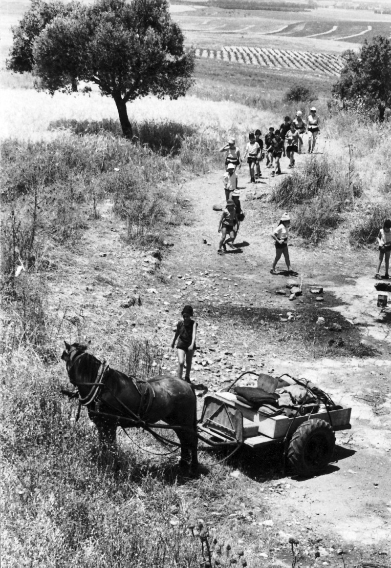 תמונה 7- 227 - טיול קבוצת אורן בסביבה עם חמור ועגלה - שנות ה-60