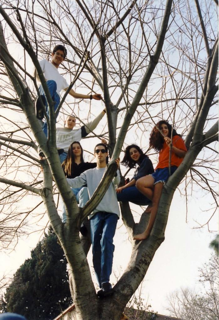 תמונה 14- 77 - נערי קבוצת סביון 1992 - תמונה קבוצתית על עץ - אורן יגאל רונן סלע