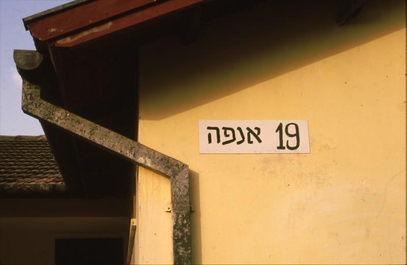 שקופית 81- 244 -ג'ש 1984-7-חב' ילדים-ביתן קב' אנפה